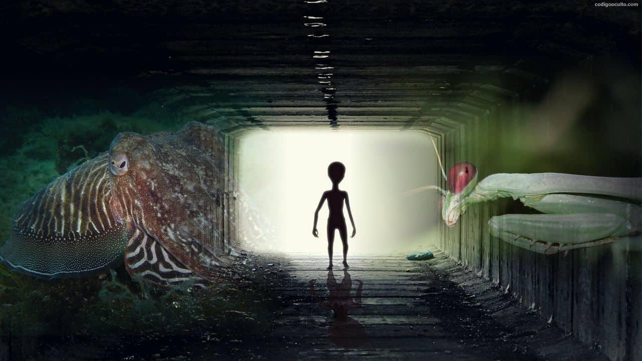 alienígenas inteligentes